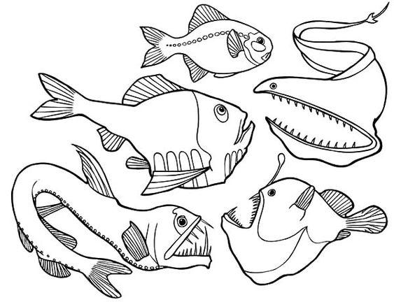 Dangerous Deep Sea Fish Angler Fish Coloring Pages Fish Coloring