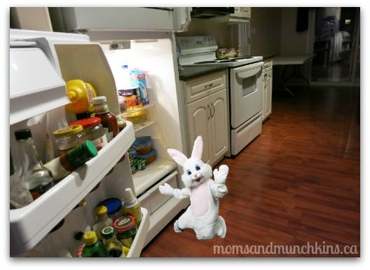 Fun ways to know if the Easter Bunny has been to your house. #Easter #EasterBunnyProof How fun is this?  Thanks @momandmunchins #LinkedMoms