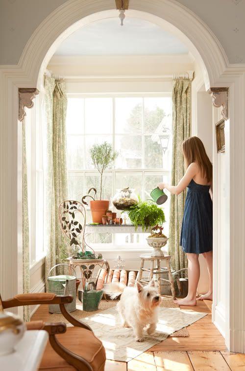 An 1850′s Converted American Farmhouse: Big Window, Dream House, American Farmhouse, Decorating Ideas, Living Room, Indoor Garden, Sun Rooms, Sunroom, Indoor Plants