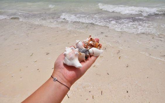 Muschelnsammeln am Strand © Carina Dieringer