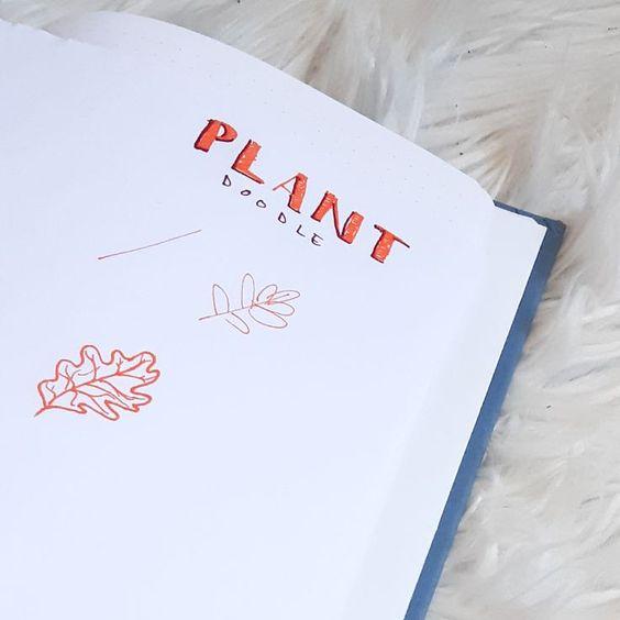 10 idées de dessins de plantes