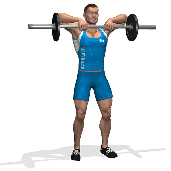 STANDING BARBELL UPRIGHT ROW INVOLVED MUSCLES DURING THE TRAINING TRAPS: