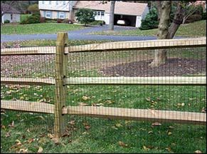 Split Rail Fence With Wire Mesh Dog Kennel Ideas