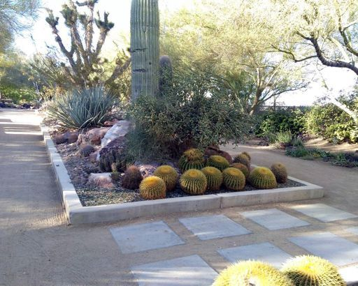 c0bc610ae4f89703b250324361098d99 - The Gardens At The Las Vegas Springs Preserve