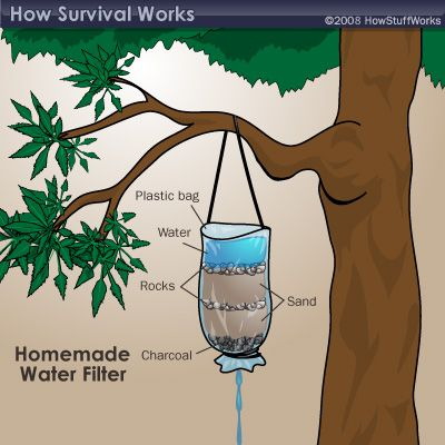 How to filter water in nature.