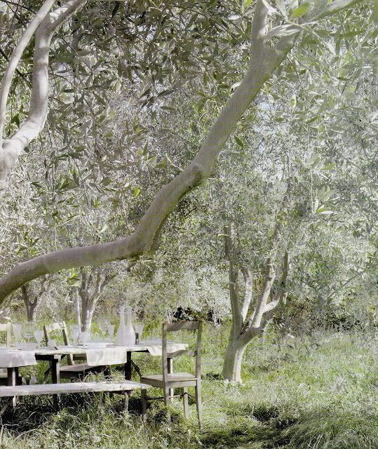 Bucolic French countryside with rustic farm table and chairs under tree. European Farmhouse and French Country Decorating Style Photos. #Provence #countryside #outdoordining