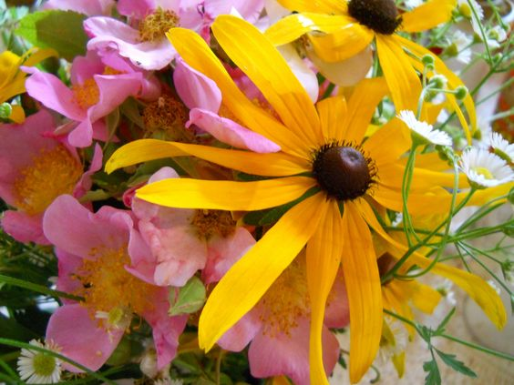 Late Spring Bouquet   Flickr - Photo Sharing!
