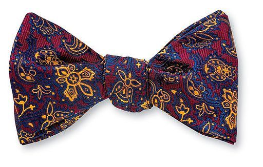 Bowties are really cool.