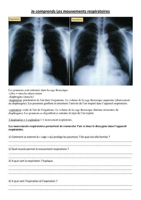 Je comprends Les mouvements respiratoires - Exercices - Cm1 - Cm2 - Sciences - Cycle 3 - Pass Education