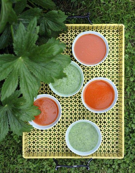 Soupe  glacée Ingrédients      2 concombres 2 pommes vertes 1 poignée de persil frais 1 coeur de céleri branche       2 fenouils 1 citron vert bio s