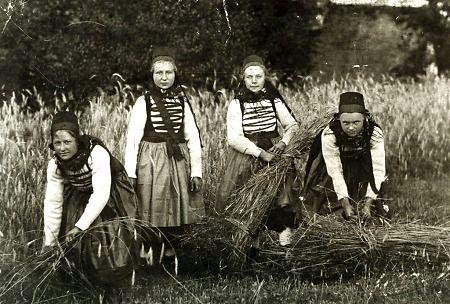 """Vier junge Frauen aus Lixfeld bei der Getreideernte, um 1920?"", in: Historische Bilddokumente <http://www.lagis-hessen.de/de/subjects/idrec/sn/bd/id/28-054> (Stand: 8.3.2011) #Obergericht"