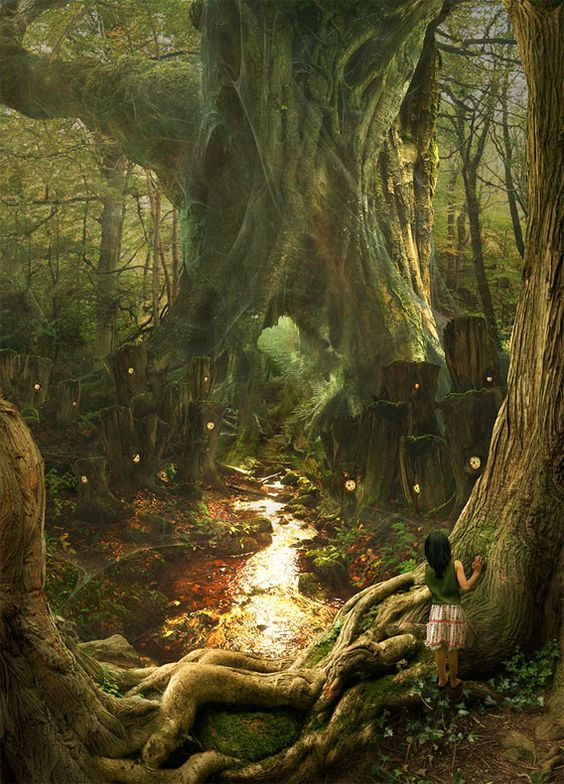 .: Fantasy Land, Fantasy Place, Enchanted Forests, Fantasy Art, Magical Places, Fairytale