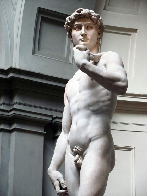 David de Miguel Angel en la Galería de la Accademia de Florencia