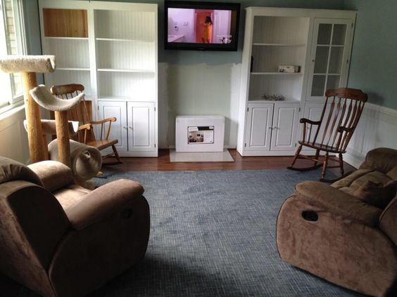 "Making progress. Area rug OLD furniture. Coming soon, mantle and bio fuel ""fireplace""."