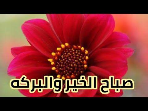 صباحيات دعاء الصباح حالات واتس صباح الخيراات Youtube Enjoyment