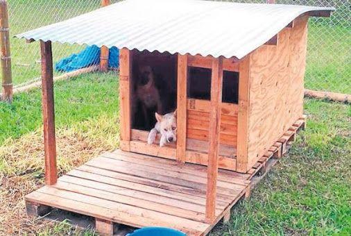Casa para perros recicladas buscar con google yanka - Casa de mascotas ...