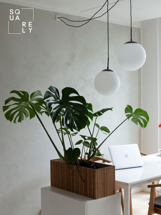 木製 鉢カバー インテリア コーディネート例 観葉植物