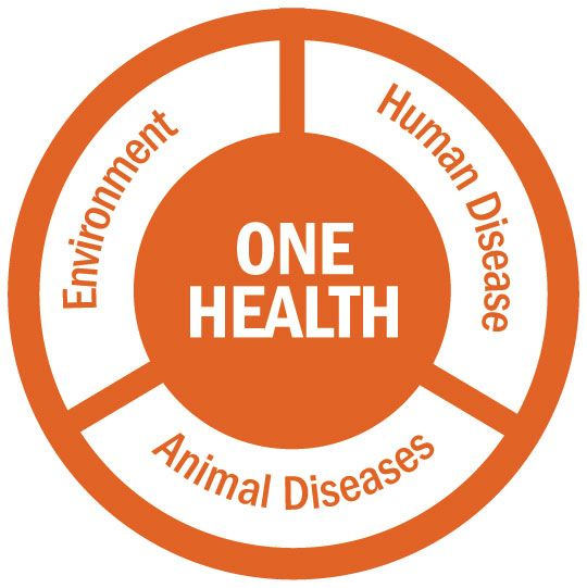 One Health: Veterinarians continue to lead real-world advances in the collaboration on human, animal and environmental well-being.