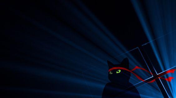 Sfondo NinjaCat celebrativo di Windows 10 Anniversary