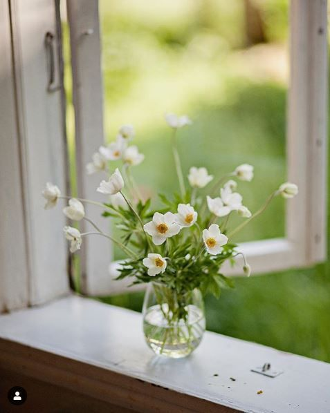 Spring White Spring Flowers Countryside Bouqet On Window Flower Arrangements Beautiful Flowers Flowers