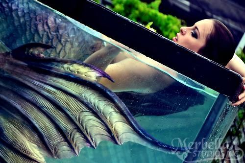 Raven in the Mermaid Tank: