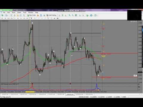 2019 Forex Strategy Gmd