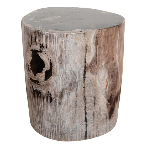 Exquisite natural petrified teak wood side table or stool for Petrified wood furniture for sale