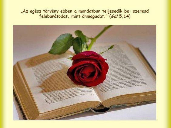 """""""Mert az egész törvény ez egy ígében teljesedik be: Szeresd felebarátodat, mint magadat.""""  (Galata 5.14)"""