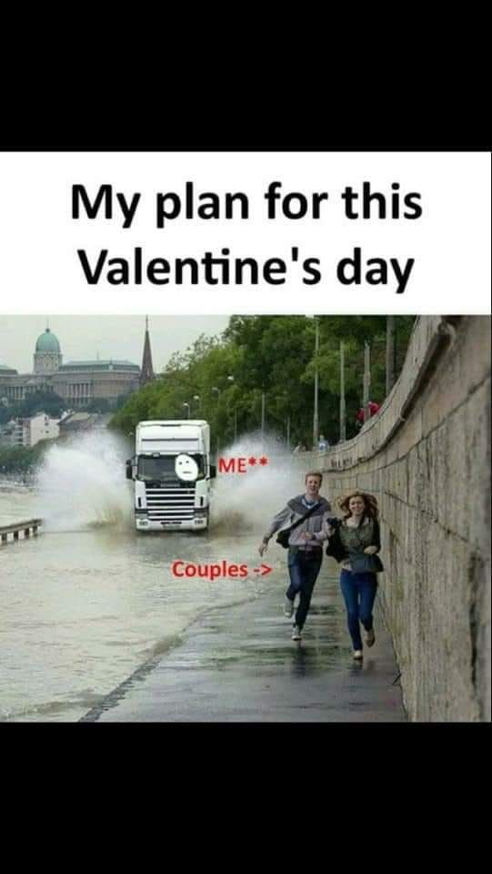 Pin By Janell On February Valentines Day Memes Really Funny Memes Funny Pictures