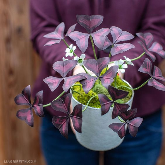 DIY Paper Oxalis Plant (Purple Shamrock/Love Plant) with cut files - Lia Griffith