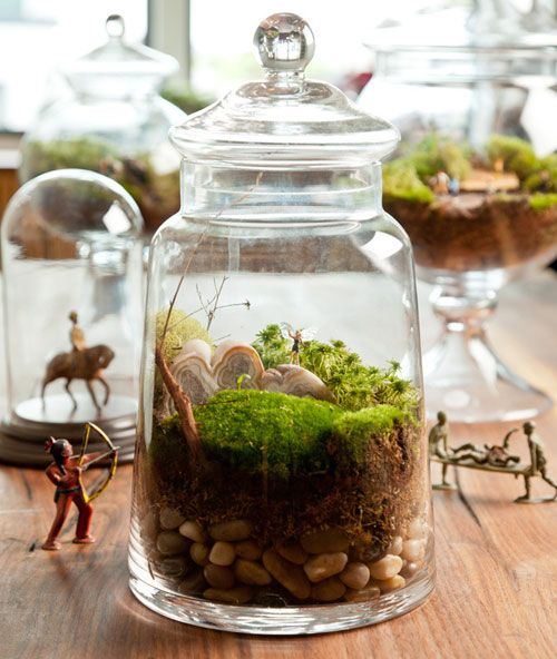 How-to-Make-a-Terrarium-Take-a-Look-at-these-10-Adorable-Ideas-diy-moss-mushrooms-gnomes-succulents-easy-diy-cute-indoor-garden-container1.jpg 500×592 ピクセル