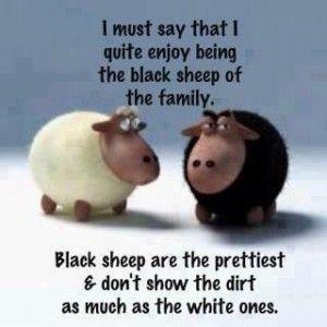 So Many Ancestors!: Friday Funny: The Black Sheep of the Family #genealogy #familyhistory: