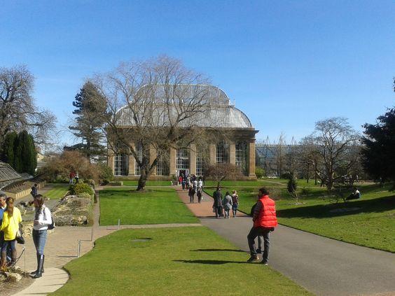 Jardín Botánico de Edimburgo. Escocia #JardinBotanico #Edinburgh #Scotland