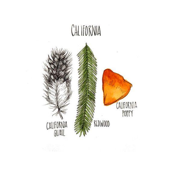 >> california: bird / tree / flower print by lucy engelman