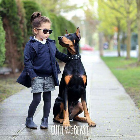 #Doberman with girl