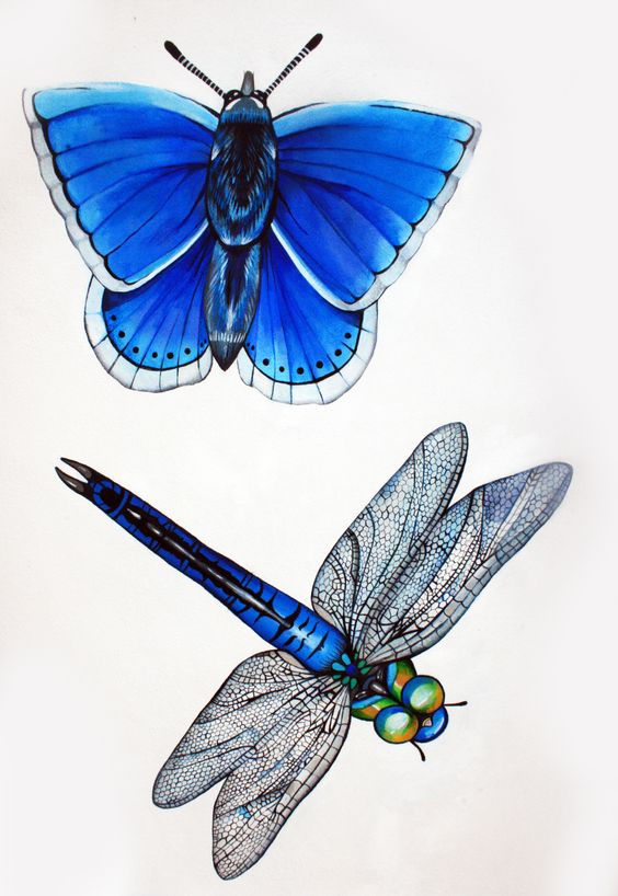 Katherine Griffin  Mural over looking the Patch, Brighton, 2016 Adonis Blue Butterfly and Emperor Dragonfly; spray paint and acrylics