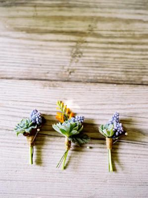 more tiny succulent boutonnieres w/ purple and yellow accents