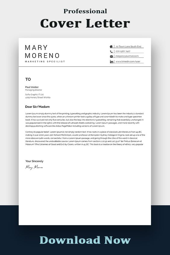Resume Template Instant Download Professional Resume Template Resume Template Word Modern Resume Template Resume Writing Cv Template In 2021 Resume Template Professional Modern Resume Template Resume Template Word