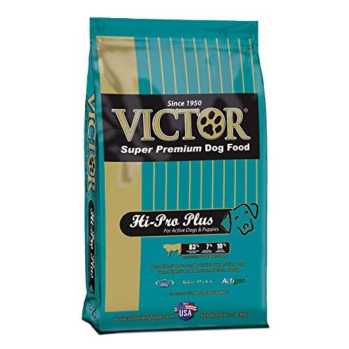 Victor Hi Pro Plus Dry Dog Food 40 Lb Bag Dog Food Recipes