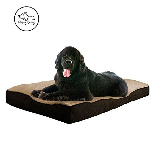 Floppy Dawg Xl Dog Bed With Removable Cover And Waterproof Liner Stuffed To 8 Inches High With Memory Foam Piec Dog Bed Large Extra Large Dog Bed Xl Dog Beds