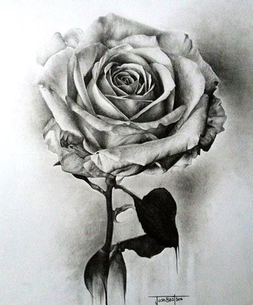 10 Hyper Realistic Drawings Sky Rye Design Design Drawings Hyper Realistic Design Drawing In 2020 Realistic Rose Tattoo Beautiful Flower Drawings Roses Drawing