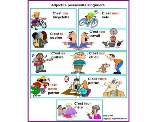 Para practicar los adjetivos posesivos (1)