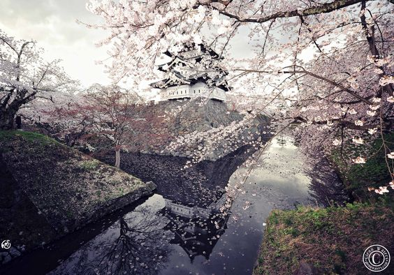 Castle in Spring. Japan. Hirosaki Castle © Glenn E Waters.  Over 13,000 visits to this image. | by Glenn Waters ぐれんin Japan.