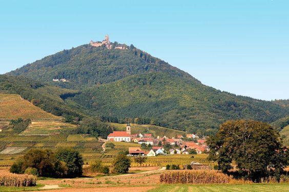 Mes vacances , château de kintzeim. Alsace.