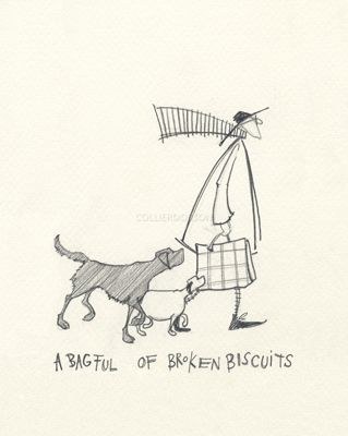 A Bagful of Broken Biscuits by Sam Toft