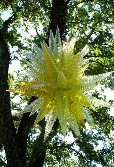 Dale Chihuly Miami And Sculpture On Pinterest