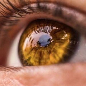 Amber oogkleur