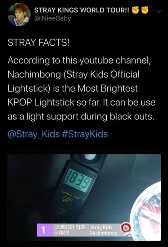 Pin By Hxn On Skz In 2020 Crazy Kids Kid Memes Memes Quotes