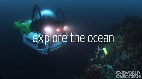explore the ocean- it's on our to-do list...