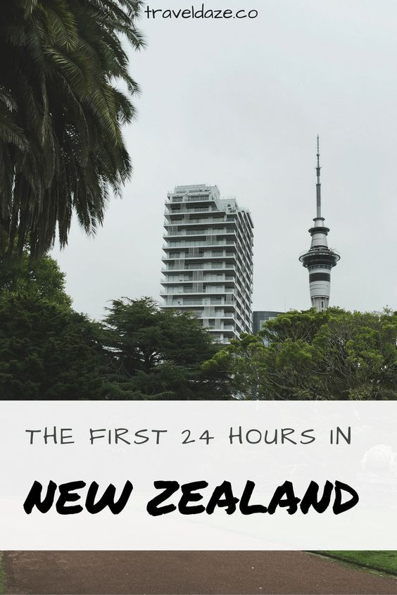 The First 24 Hours in New Zealand: How I Spent the First Day of a Year-Long Journey